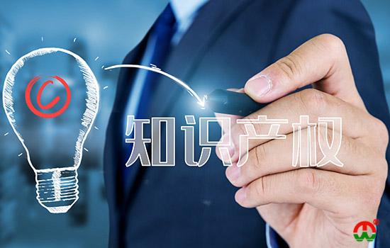 中国专利文献的编号体系是怎样的?